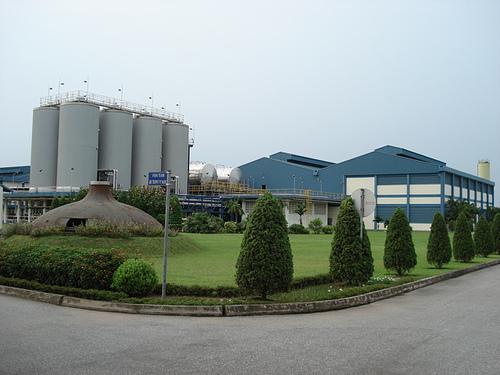 Chăm sóc cây xanh nhà máy, khu công nghiệp