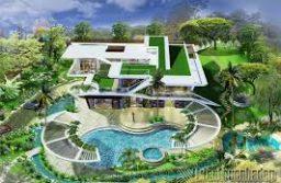 Chăm sóc, bảo dưỡng cây xanh sân vườn biệt thự