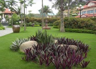Cảnh quan sân vườn đẹp