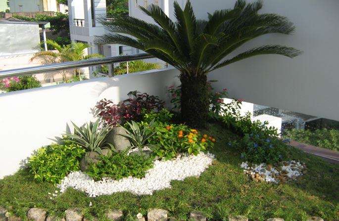 Tiểu cảnh sân vườn nhà phố, biệt thự